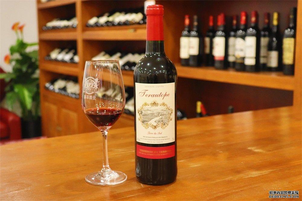 代理哪种品牌比较适合法国葡萄酒生意